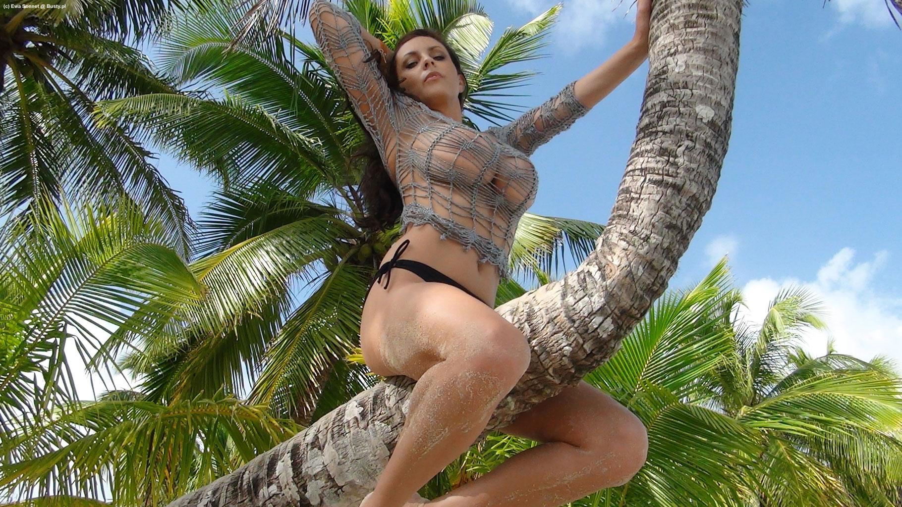 Эротика пальмы видео