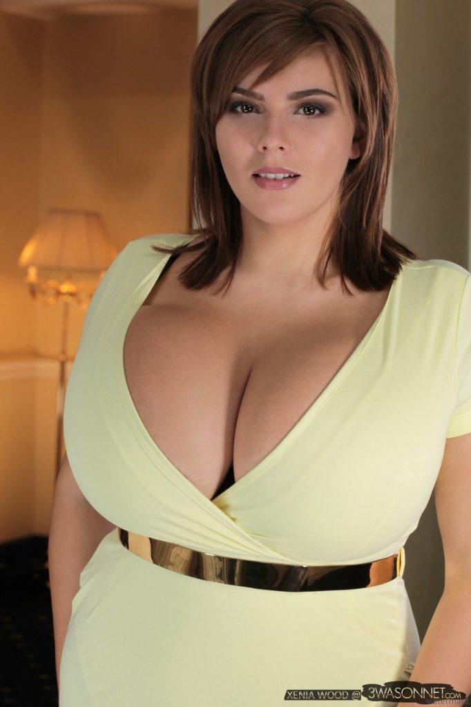 Xenia Wood Cleavage Dress