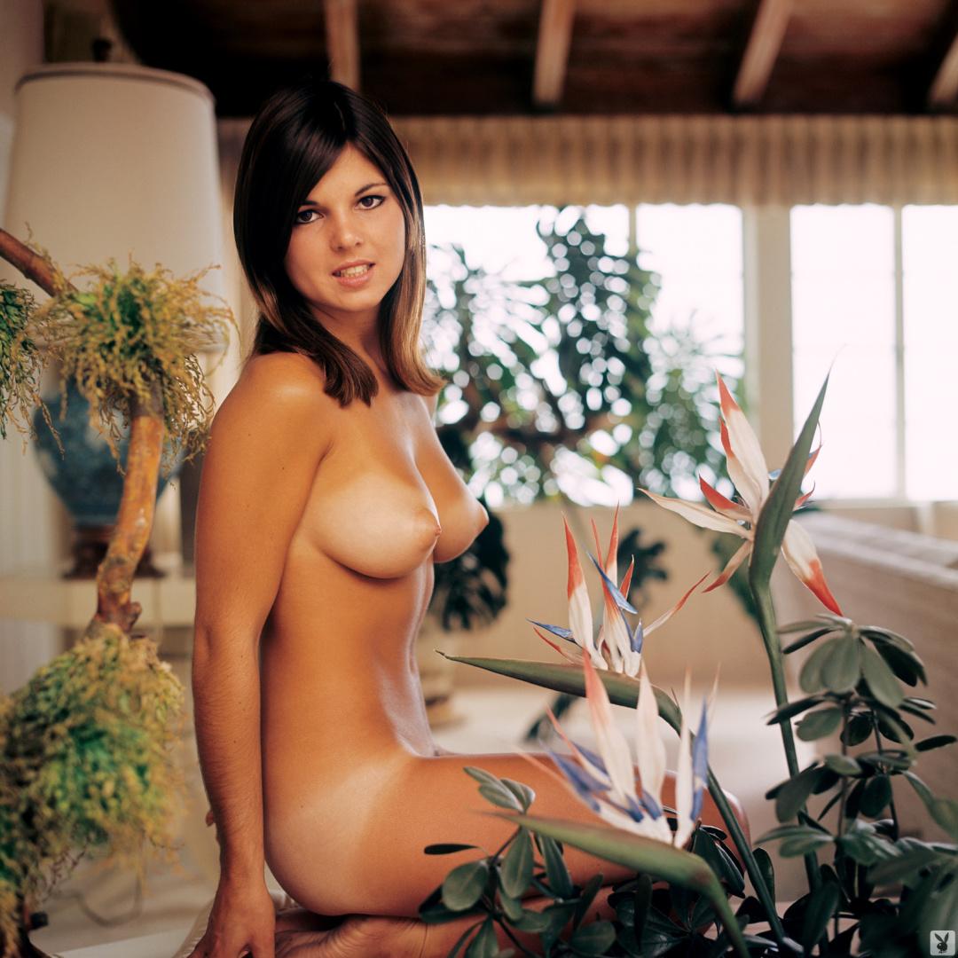 sexy girls lingerie nakef
